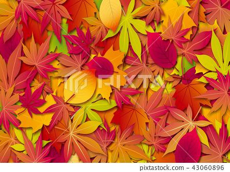 秋天圖像,秋葉,秋葉,槭樹葉子,秋葉,秋天,秋天,季節,背景圖像,秋天背景,秋天 43060896