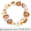 框架秋天蘑菇水彩例证 43061541