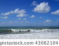 바다, 동해, 파도 43062104