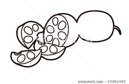 Illustration of lotus root (Comb cutting) 43062493