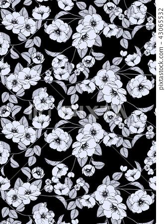 抽象的無縫菊花花卉集合 43065532