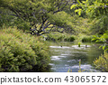 奧日光 湯川 散步 43065572