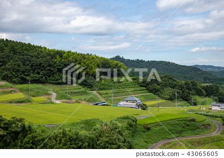 산간의 시골 풍경 (에히메 현 東温시) 43065605