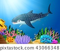 水生的 珊瑚 鱼 43066348