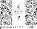 Olive tree banner template. Vector vintage illustration. Hand drawn engraved style background 43066815