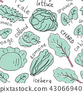Hand drawn doodle vegetables seamless pattern 43066940