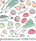 Hand drawn doodle vegetables seamless pattern 43067054