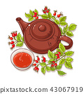herb, fruit, herbal 43067919