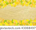 가을, 단풍, 단풍잎 43068497