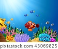Tropical fish with beautiful underwater world 43069825