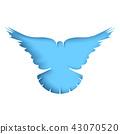dove, bird, pigeon 43070520