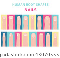 Human body shapes. Hand finger nail types set 43070555
