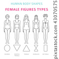 Human body shapes. Female figures types 43070575