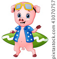 Illustration of Smiling pig cartoon with surfboard 43070757