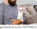 Bearded dark-haired man holding his little white dog 43070811