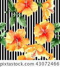 floral flower plant 43072466