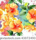 floral flower plant 43072493