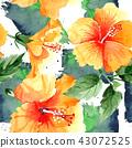 floral flower plant 43072525