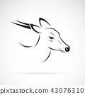 Vector of Barking deer or Muntjac (Muntiacini). 43076310