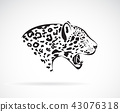 Vector of a leopard. Wild Animals.  43076318