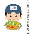 菜販 蔬菜水果商 男人 43080907