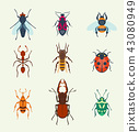 Vector insects icons isolated on background colorful top view illustration of wildlife wing fly 43080949