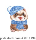Cute ferret in blue hat 2 43083394