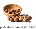 Close up of Macadamia Nuts 43083427