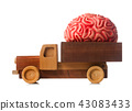 Wooden truck carries a rubber brain 43083433