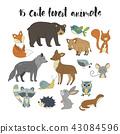 squirrel, bear, deer 43084596