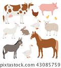 farm, animal, set 43085759