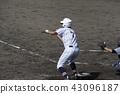 고교 야구 번트 43096187
