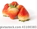Red ripe strawberries isolated on white background 43100383