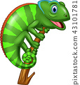 Cartoon chameleon on a branch 43101781