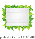 Shiraki sign leaf (PNG, clipping material) 43103508