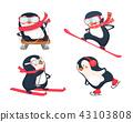 active penguins in winter 43103808