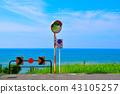 东滨海岸 43105257