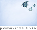 Fishes on blue background. 43105337