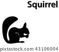 Silhouette of squirrel eating nut on white 43106004