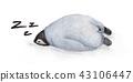 Cute sleeping animal design 43106447
