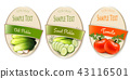 Set of labels with ecological tomato and pickles  43116501