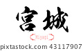 Calligraphy word of Miyagi in white background 43117907