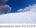 黑霜和斜坡 43125379