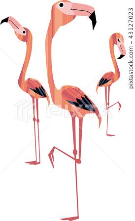 三隻火烈鳥 43127023