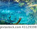연못, 샘, 원천 43129398