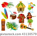 Traditional symbols of Hawaiian culture set, hibiscus flower, bungalow, surfboard, tiki tribal mask 43130579