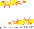 กรอบดอกเบญจมาศของดอกเบญจมาศและฤดูใบไม้ร่วง 43130707