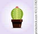Decorative cactus with prickles on the white background. Home plant in pot. Flat style icon 43131382