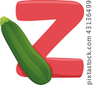 Z for Zucchini Illustration 43136499