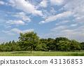 공원, 파크, 봄 43136853